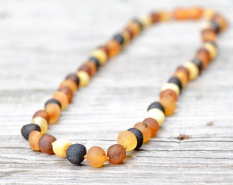 Wholesale 10 Baltic amber necklaces