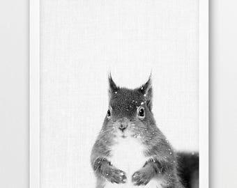 Squirrel Print, Squirrel Photo Print, Woodlands Animals Black White Photography, Baby Shower Nursery Animals Art, Kids Room Printable Decor