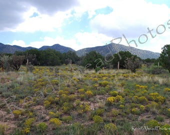 New Mexico photography, Turquoise Trail, Southwest landscape 8 x 10