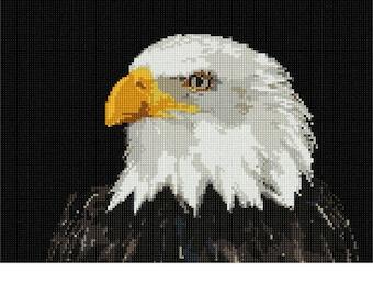 Needlepoint Kit or Canvas: Eagle