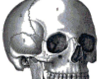 Vintage Skull Anatomy Cross Stitch Pattern, Digital Download PDF