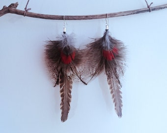 Australian Brown Falcon and Tawny Frogmouth feather earrings - 925 sterling silver hooks