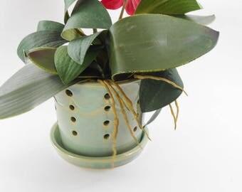 Large light green orchid pot - orchid cache pot - ceramic orchid pot - orchid planter - orchid pot V164