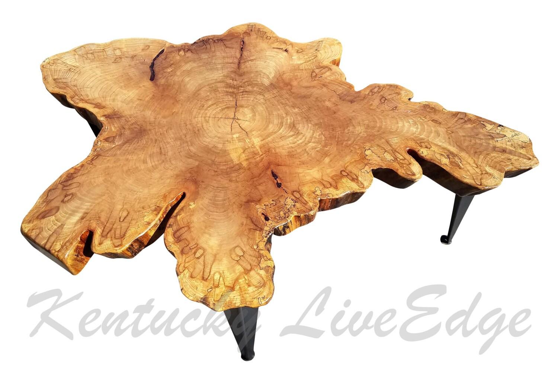 Sweet Little Gems Large Tree Slice Coffee Table