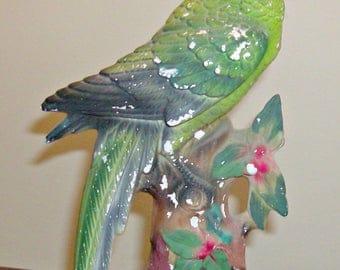 Vintage CHALKWARE Parrot