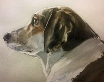 Pet Portraits, Custom Pet Portraits, Dog Portraits, Cat Portraits