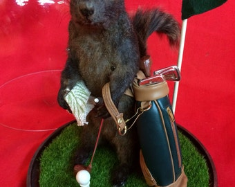Taxidermy Black Squirrel Golfer Glass Dome Display-Anthropomorphic-putter-golf-Diorama-Golf-rat-mouse-coyote-bat