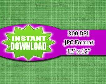 Green Grid Lines Scrapbook Page Craft Supply Printable - 300 DPI - JPG File Format - 12x12 - HighResolution - INSTANT Digital Download - 445