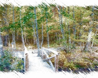 Bridge into the Garden, Acadia National Park, Maine