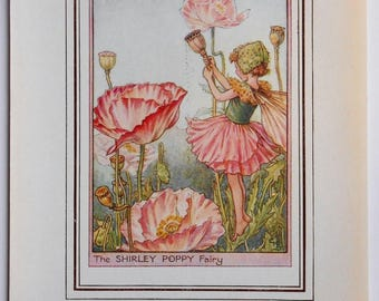Shirley Poppy Flower Fairy Vintage Print, c.1950 Cicely Mary Barker Book Plate Illustration