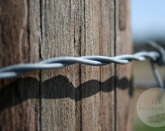 Barbed Wire Fence Post,  Fine Art Photography