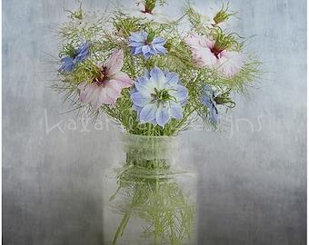 Photographic print, Nigella photo print, flower photo print, fine art flower print,