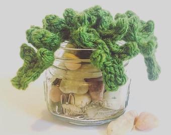 Fern on the Rocks | Crocheted Plant / Fern