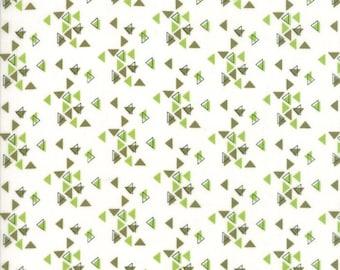 1/2 Yard - Spectrum Ombre - Triangles - Avocado Paper - V and Co - Vanessa Christenson - Moda Fabrics - Fabric Yardage - 10862-22