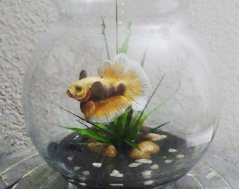 Yellow Betta Bowl