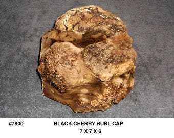 7800 Black Cherry Burl Figured Cap Bowl Blank Hollow Form Blank Woodturning Sculpture Black Cherry Lumber 7x7x6