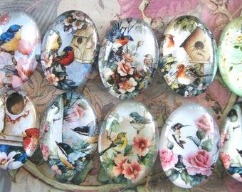 Glass Dome Cabochon,18x25,10pcs