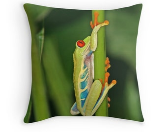 Frog Decor, Frog Pillow, Tree Frog, Frog Gift, Costa Rica, Tropical Pillow, Green Pillow, Nature Pillow, Wildlife Pillow, Frog Cushion