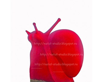 Nature inspired gifts, giant red snails, kids nursery objects, original sculptures, pictures wall, interior design, Wall decor, gift print