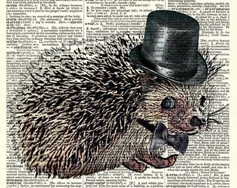 Dapper Little Hedgehog Walking Sideways, art print.  Vintage book page art print.  Print on book page.
