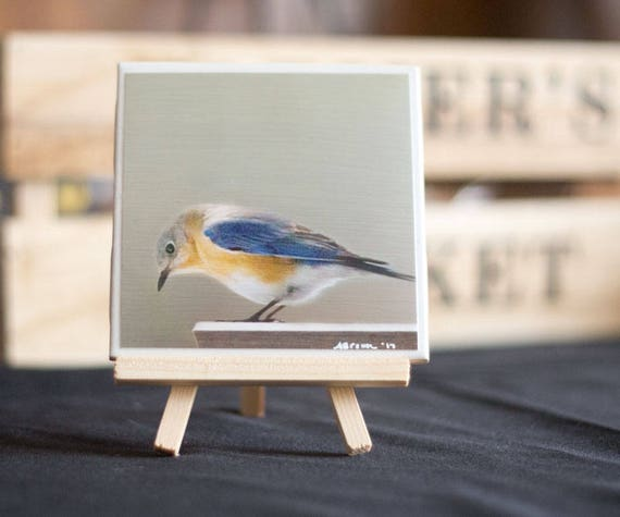 4.25 x 4.25 Blue Bird Ceramic tile with Easel