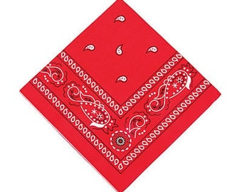 The old old West Party napkins / Western party napkins / old west theme/ west theme