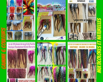1000 assorted colorful and natural grizzly Rooster feathers