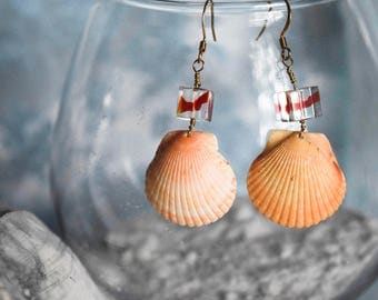 Red Ribbon Glass Cubes with Orange Scallop Shells