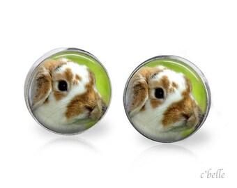 Ear Easter Bunny of bunnies 2