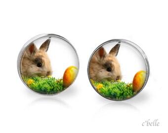 Ear Easter Bunny of bunnies 9