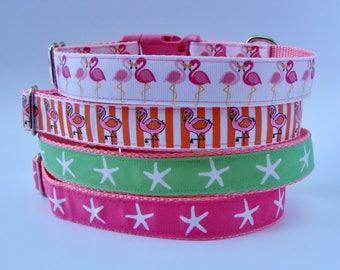 Beach Dog Collar - Pink - Flamingo, Starfish - Ready to Ship!