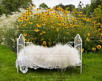 Digital background yellow flowers