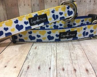 "The Chandra - Exclusive Blue & Yellow Hearts | Designer 1"" Width Dog Collar | CupcakePups Collars | Medium/Large Dog Collar"