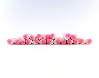 Polymer Clay Pink & White Petal Cane, Bin #3A
