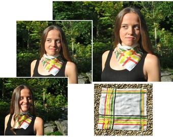 Multicolored Stripe Silk Scarf