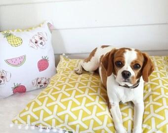 Fruit Salad Floor Cushion/Pet Bed