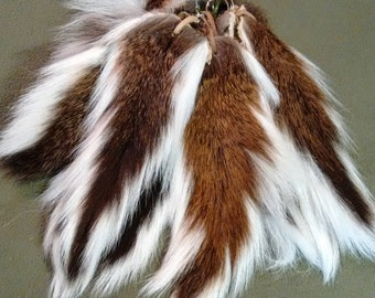 Deer Tails, Ready to Wear!