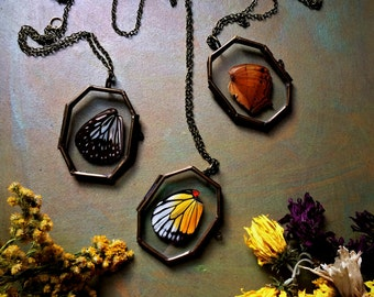 Psykhe - Butterfly Wing Glass Locket Necklace