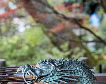 Japan Photography, Temple Purification Font, Gallery Wall Art, Michael Evans, Japanese Style, Travel Photography, Beautiful Japan, Dragon