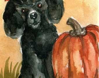 Dandy Black Poodle Dog Pumpkin Art Work in Miniature by llmartin Original ACEOWatercolor New Mom Baby Nursery Free Shipping USA