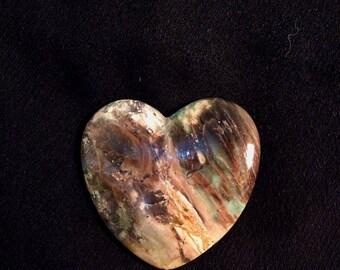Petrified Wood agate Cabochon handmade cabochon