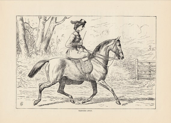 Early Equestrian Lady Riding Her Horse Sidesaddle Side Saddle