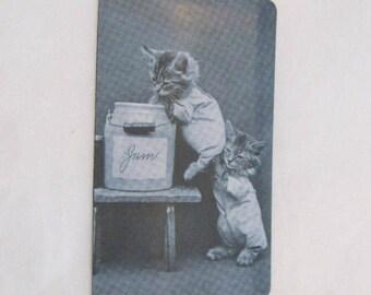 Kittens and Jam Magnet