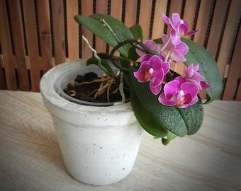 """Plant pot """"Concrete Planter"""""""