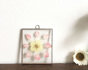 Real pressed petal flower glass wall art hanging frame