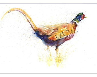 PHEASANT limited PRINT of original watercolour painting by Helen Rose 337