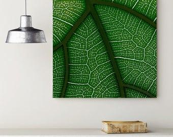 Green Leaf Veins, Green and Black Canvas, Leaf on Canvas, Detailed Leaf on Canvas, Nature Canvas, Green and Black Wall Decor