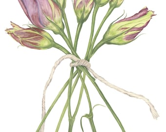Lisianthus Painting, Print, Watercolor Painting, Botanical Flower, Contemporary Watercolor Print, Original Painting, Home Decor