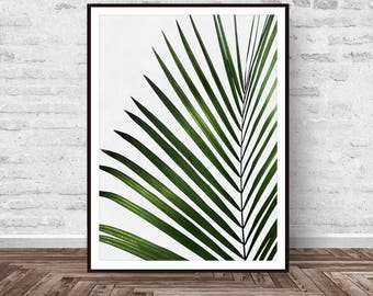 Palm Tree Leaf Print, Tropical Art, Leaf Print, Botanical Wall Art, Tropical Wall Art, Green Leaf, Leaf Printable Art, Instant Download