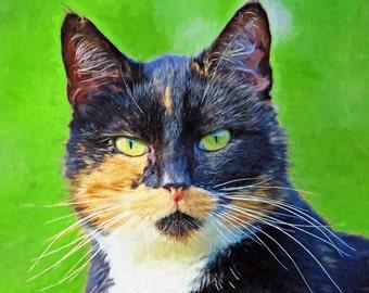 Custom Cat Portrait, Personalized Cat Portrait, Cat Lovers Gift Idea,